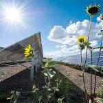 Quanto è efficiente un pannello fotovoltaico?